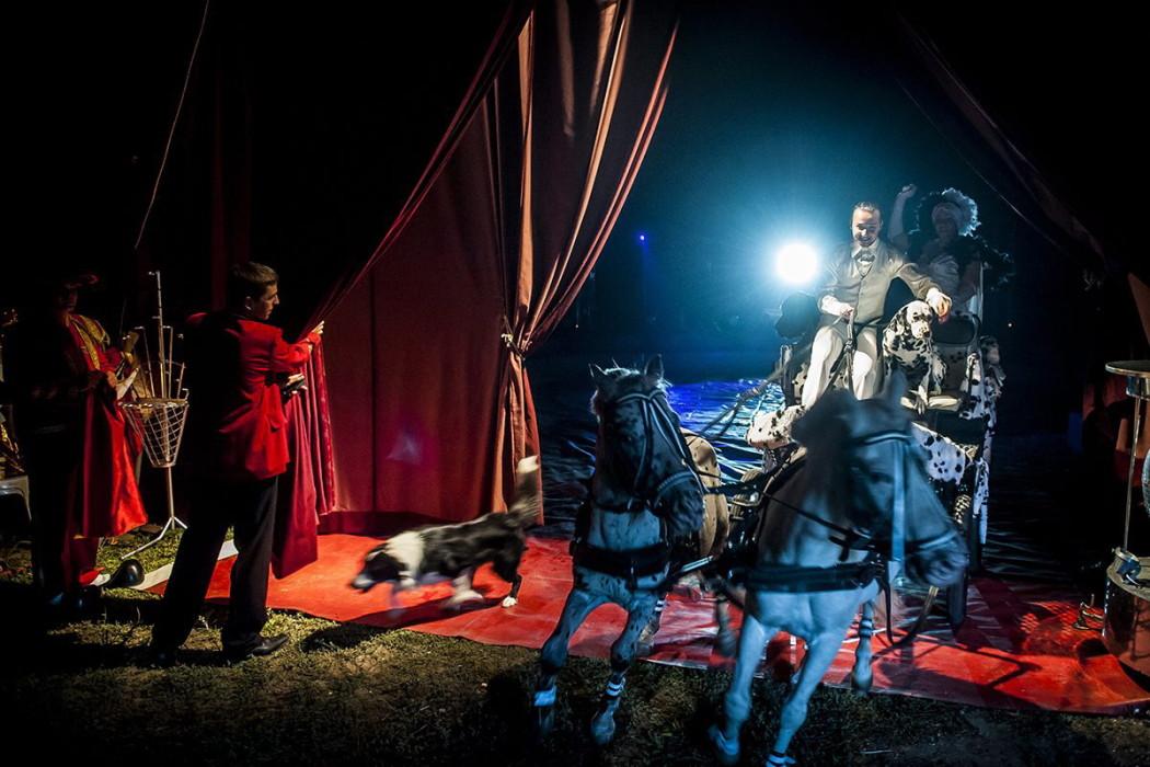 A Népszabadság fotóriportere, Kurucz Árpád képe az Eötvös cirkusz című sorozatból, amely első helyezést nyert a 32. Magyar Sajtófotó Pályázat művészet (sorozat) kategóriájában.