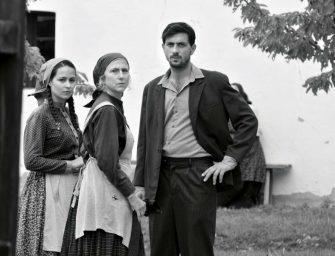 Hollandiában fődíjas lett, aztán Amerikába megy Török Ferenc filmje