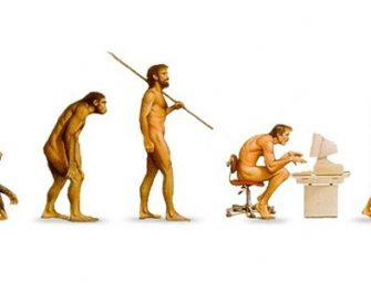 A török középiskolások nem képesek fölfogni az evolúciót?