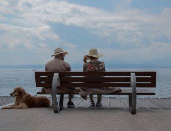 Receptre írnának föl kutyát az időseknek