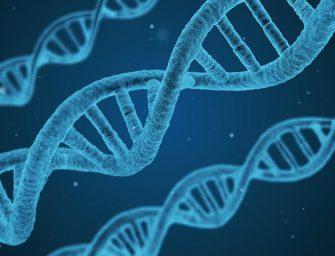 Eddig ismeretlen gének millióit fedezték fel az emberi szervezetben