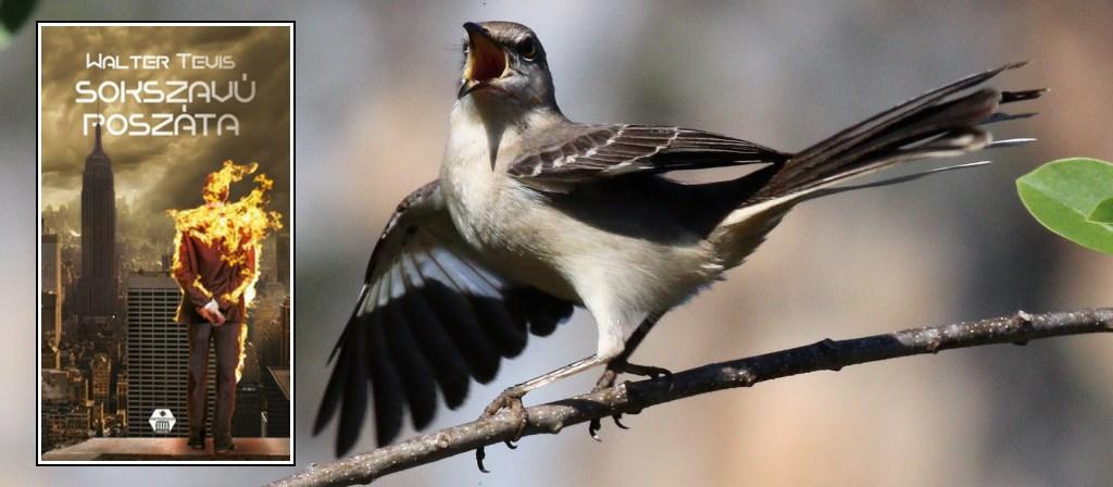walter tevis sokszavú poszáta galaktika mockingbird