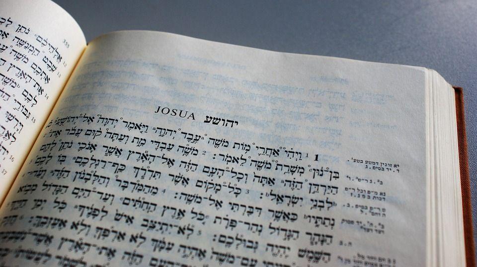 A zsidó kultúrát képviselő 120 ezer könyv kerül föl a netre